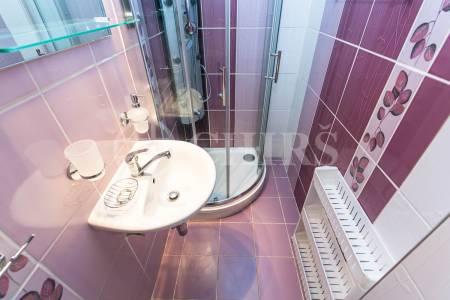 Pronájem bytu 1+kk, OV, 25m2, ul. Nad Lesním Divadlem 1115/14, Praha 4 - Braník