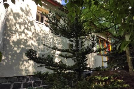 Prodej pozemku se stavbou, 563 m2, ul.Stinná Zdiby Praha- východ.