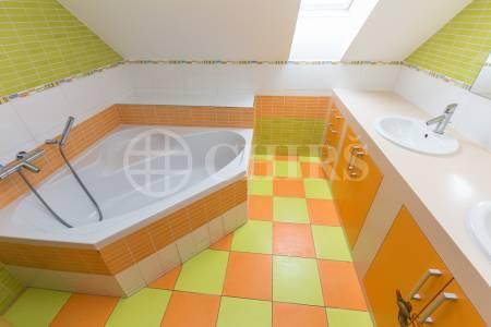 Prodej rodinného domu 6+1, 360 m2 s terasou,  zahradou, bazénem a garážovým stáním, Trnová 179, Trnová u Jíloviště