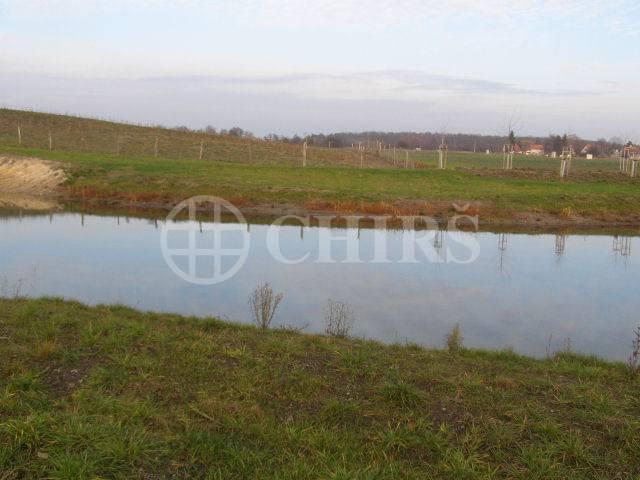 Prodej pozemku k výstavbě, 1742 m2, pozemek č. 52, Křečkov