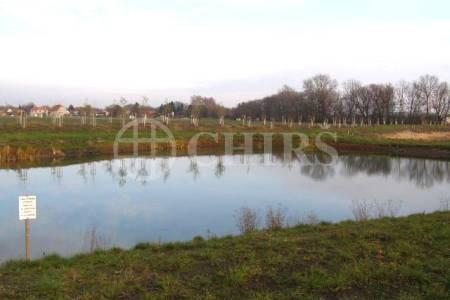 Prodej pozemku k výstavbě, 1614 m2, pozemek č. 48, Křečkov