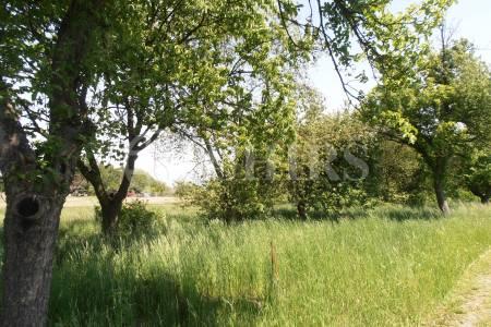 Prodej stavebního pozemku 1391m2, Chlumec nad Cidlinou